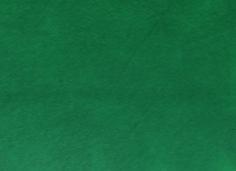 Narvsverte Grønn