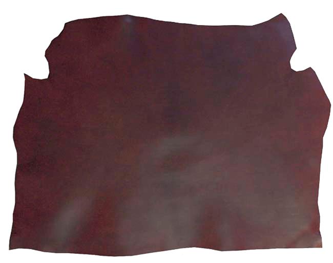 Bilde av forpart gjennomfarget