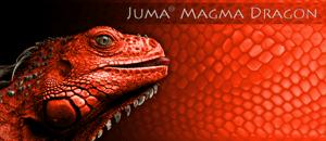 Juma Magma Dragon